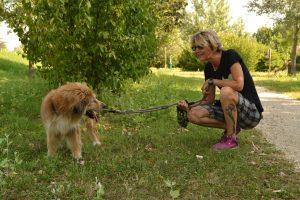 dog sitter in passeggiata con il cane